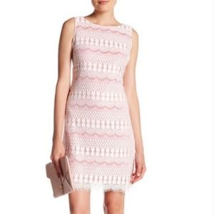 Eliza J Pink & White Lace Sheath Dress